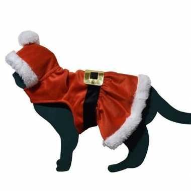 Kerstman outfitje outfit voor katten
