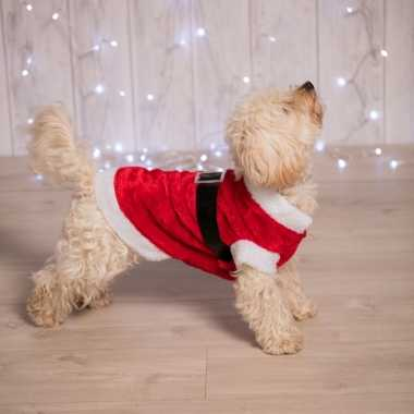 Kerstoutfit voor de hond